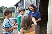 Isy Large and her children: Joseph, 12, Edward, 12 and Charlotte, 6, in the chicken run at Hares Farm. CREDIT: Vanessa Berberian for The Wall Street Journal<br /> UKFARM-Hares Farm
