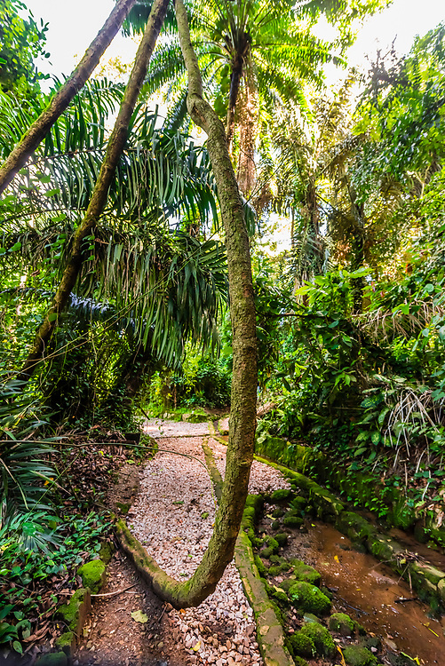 The rainforest of the National Botanical Gardens of Uganda, along Lake Victoria, in Entebbe, were used as a backdrop for several Tarzan movies with Johnny Weissmuller.