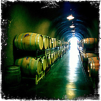 2013 May 13:  Sonoma wine country iphone Hipsta.  Wine barrels in cave