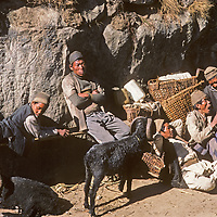 Lowland Nepali villagers relax with sheep they are trying to sell at the Saturday market in Namche Bazar, leading town of the Sherpas in Nepal.