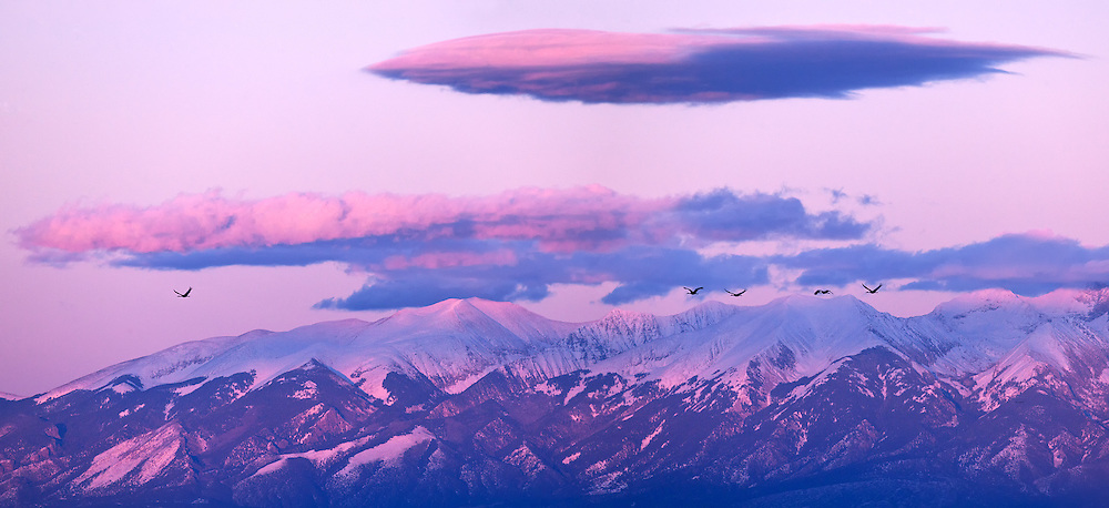The setting sun casts its final pink-purple rays onto the Sagre de Cristo Mountains while the sandhills head home for the night. This picture consists of six vertical photographs taken with a 400mm lens and stitched together in Photoshop. The result of this type of capture is an extremely high resolution image that can be printed quite large without loss of detail.