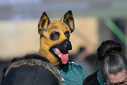 February 8, 2018 - Philadelphia, Pennsylvania, U.S - Eagles fan wearing the underdog mask, at  the Philadelphia Eagles Super Bowl celebration in Philadelphia PA (Credit Image: © Ricky Fitchett via ZUMA Wire)