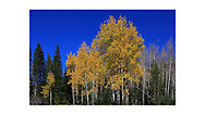 Rocky Mountain National Park, Colorado, USA