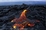 pahoehoe lava oozes onto Lae'apuki Bench during <br /> continuing eruption from Pu'u O'o, Kilauea Volcano<br /> Hawaii, USA Volcanoes National Park, Jan 2000 <br /> Big Island of Hawaii, USA
