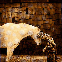 Woman bowing into the horse language realm. Photo based illustration.