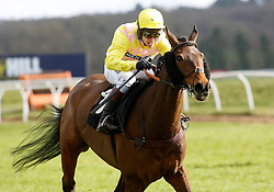 Hello George ridden by Richard Johnson pulls away from the last flight before going on to win The William Hill 'High 5' Supporting Greatwood Seniors' Handicap Hurdle Race run at Newbury Racecourse.