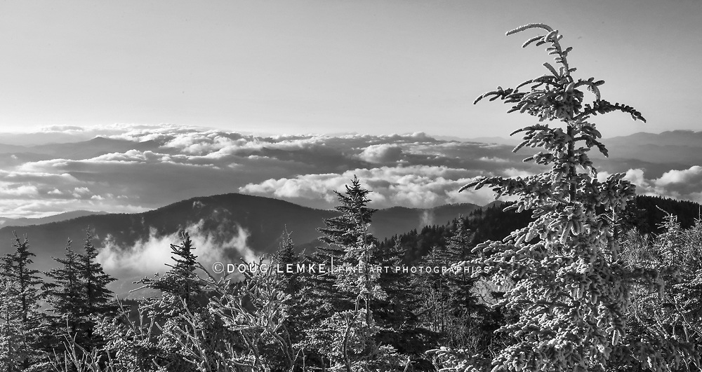 Sunrise at Clingman's Dome in The Great Smoky Mountains on a cold, snowy autumn morning, Great Smoky Mountains National Park, Tennessee - North Carolina, USA