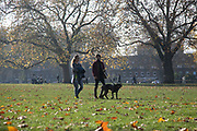 A couple walk their dog in the autumn sun during the second coronavirus national lockdownon on 7th of November 2020, hackney,East London, United Kingdom. The UK Government introduced a 4 week lockdown from November 5th - December 2nd to combat the coronavirus outbreak. It is the third day of the national lockdown restrictions mean that people are only allowed to meet outside, in pairs and only if keeping social distance. Only if they already live together or have formed a social bubble can they interact freely.