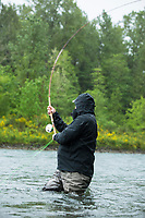 Mark Shamburg fly fishing for steelhead on the Clackamas River in northern Oregon.