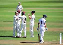 Somerset's Jack Leach celebrates the wicket of James Vince with his teammates.  - Mandatory by-line: Alex Davidson/JMP - 23/08/2016 - CRICKET - Cooper Associates County Ground - Taunton, United Kingdom - Somerset v Hampshire - Specsavers County Championship Division One
