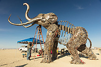 The Monumental Mammoth Build<br /> by: Girl Scout Gold Award Recipient Tahoe Mack, Mentor and Protector of Tule Springs Representative Sherri Grotheer, and artists Luis Varela-Rico and Dana Albany<br /> from: Las Vegas, NV<br /> year: 2019<br /> <br /> The Monumental Mammoth project will depict a life-sized steel Colombian mammoth skeleton collaged with metal found objects to tell the story of Tule Spring National Monument's past, present, and future. The sheer size and struggle of the mammoth's stance is a representation of the universal call to protect what the earth has given humanity. As a community, we are called together to protect the fossils of our past and the education of our future. Dana Albany and Luis Varela-Rico are pulling together the sleek elements of the interior steel structure and the intricate weavings to represents the distinctive community that is Las Vegas.It also tells the story of a rising feminine power, and shows all women of any age that anything is possible!<br /> <br /> URL: https://tulemammothproject.wordpress.com<br /> Contact: tulemammothproject@gmail.com<br /> <br /> https://burningman.org/event/brc/2019-art-installations/?yyyy=&artType=H#a2I0V000001AVtMUAW My Burning Man 2019 Photos:<br />