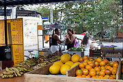 Women chatting on a fruit stall. Cidade de Deus / City of God favela in Rio de Janeiro, made infamous by the film of the same name, is a bustling community of close to 100,000 inhabitants, with numerous cultural and social projects.
