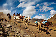 Men with a group of horses that are used to carry merchandise to the sanctuary of the Lord of Qoyllur Rit'i (The Lord of the Shining Snow) in Cusco, Peru.