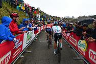 Manuele Boaro (ITA - Bahrain - Merida) - Vasil Kiryienka (BLR - Team Sky) during the 101th Tour of Italy, Giro d'Italia 2018, stage 14, San Vito Al Tagliamento - Monte Zoncolan 181 km on May 19, 2018 in Italy - Photo Dario Belingheri / BettiniPhoto / ProSportsImages / DPPI