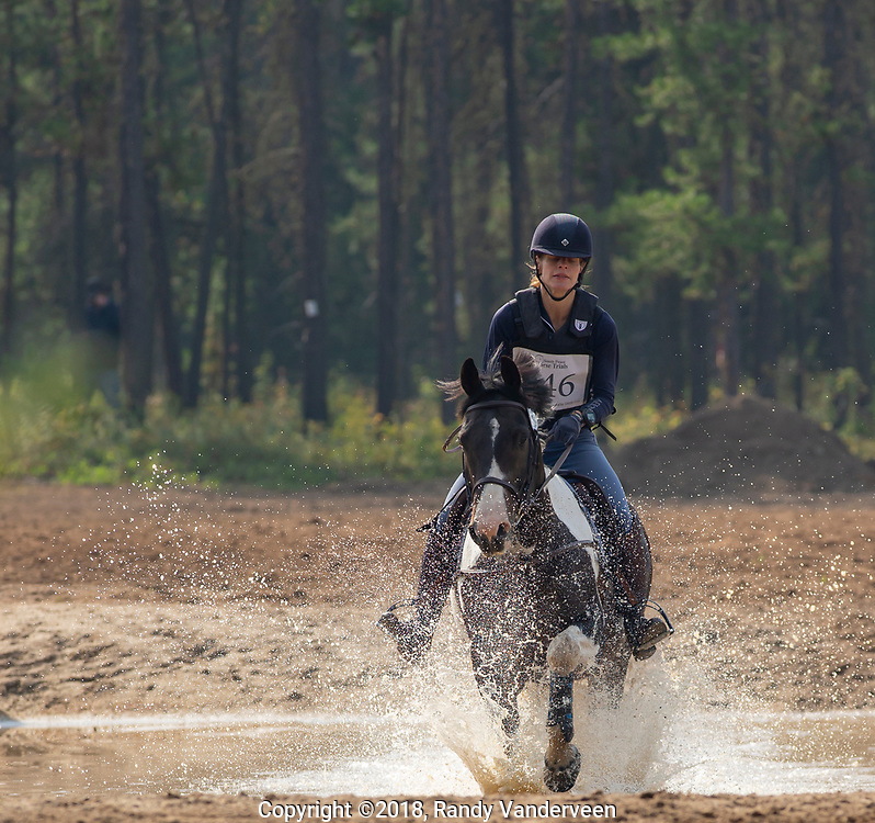 Photo Randy Vanderveen<br /> County of Grande Prairie, Alberta<br /> 2018-09-02<br /> Catherine Moreland and Indiana Impression splash through a water obstacle during the cross country event at the South Peace Horse Club's eventing at Evergreen Park, Sunday. The two-day annual equestrian competition had riders and mounts competing in dressage, stadium (show jumping) and cross country.