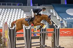 Van Beek Roy, BEL, Fortune R Z<br /> Pavo Hengsten competitie - Oudsbergen 2021<br /> © Hippo Foto - Dirk Caremans<br />  22/02/2021