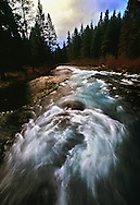 The Metolius River, a Wild and Scenic river, flows at a steady rate and temperature in the Deschutes National Forest.