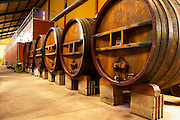 The wine cellar winery with big old wooden casks and concrete fermenting vats at Chateau des Fines Roches, Chateauneuf-du-Pape, Vaucluse, Rhone, Provence, France