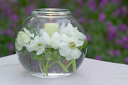 Vase with candle and white Anemone coronaria