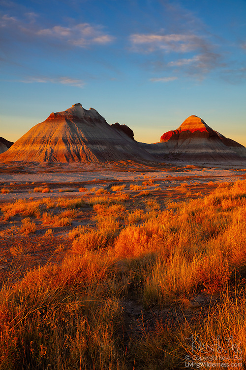 Badlands formations known as the Tepees in Petrified Forest National Park, Arizona, are turned golden red near sunset. Tepees, also spelled tipi or teepee, is a tent that is traditionally made of animal skins over wooden poles. While humans have lived for 13,000 years in and around the modern day Petrified Forest National Park, the native dwellings were more commonly pithouses and pueblos.