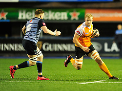 Cheetahs' Rynier Bernardo takes on Cardiff Blues' Macauley Cook<br /> <br /> Photographer Mike Jones/Replay Images<br /> <br /> Guinness PRO14 Round 14 - Cardiff Blues v Cheetahs - Saturday 10th February 2018 - Cardiff Arms Park - Cardiff<br /> <br /> World Copyright © Replay Images . All rights reserved. info@replayimages.co.uk - http://replayimages.co.uk