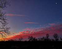 Backyard Winter Sky in New Jersey. Red Clouds at Dawn. Image taken with a Fuji X-T1 camera and 16 mm f/1.4 lens (ISO 200, 16 mm, f/5.6, 1/60 sec).