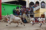 El toro enérgico arremete contra el público, la gente corre en sentido contrario.