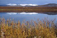Alaska Range from 50 Mile Lake on the Denali Highway, Alaska.
