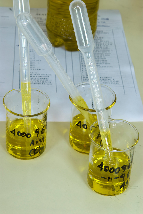 the olive oil quality form and containers with samples