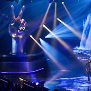 NLD/Hilversum/20120120 - Finale the Voice of Holland 2012, opreden Erwin Nyhoff