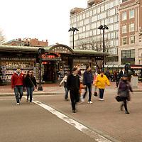 cross walk at Harvard Square