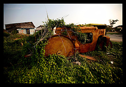 23 June, 2006. New Orleans, Louisiana. Overgrown. Lower 9th ward. Many months after hurricane Katrina, a road roller lies abandoned and covered in creeping vines as the overgrowth takes control of the smashed neighbourhood.