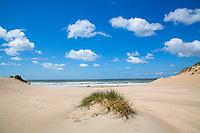 BLOEMENDAAL AAN ZEE - Stuivend zand is van levensbelang voor de karakteristieke planten en kruiden die in het duingebied thuishoren.  Om het stuiven te bevorderen houdt men de duinen open en heeft men paar jaar geleden vijf windsleuven gemaakt. ANP COPYRIGHT KOEN SUYK