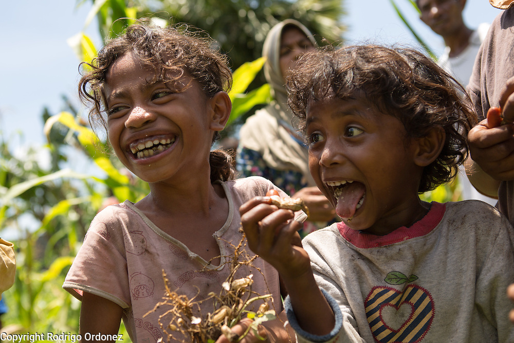 Girls eat peanuts in Lebe, Omesuri subdistrict, Lembata district, East Nusa Tenggara province, Indonesia. Siti Rofi'ah supported Lapin, a group of farmers and fishermen from this village.