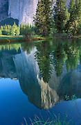 Morning light on El Capitan reflected in the Merced River, Yosemite National Park, California