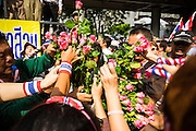 27 NOVEMBER 2013 - BANGKOK, THAILAND: Anti-government protestors hand out flowers to present to police on Rama I Road near police headquarters in Bangkok. About 500 people from the Silom area of Bangkok walked to Royal Thai Police Headquarters on Rama I Road and presented police officers with roses and orchids. The action was one of the continuing anti-government protests gridlocking the Thai capital. After the meeting at police headquarters the protestors joined other protestors at the Ministry of Finance. Protests also spread to other government ministries and several provinces in southern Thailand, a stronghold of the opposition.      PHOTO BY JACK KURTZ