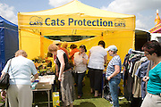 Cats protection fundraiser