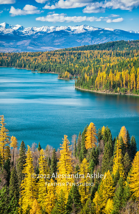 Scenic view of Holland lake, Swan Valley, Swan mountain range and Mission Mountains (aka the American Alps) from Holland Falls National Recreation Trail. Autumn colors of ponderous pine, red fir, and western larch frame the lake.  Western Montana, USA. Image placed in Top 25 in the Great American Landscape 2015 juried competition by Chasing the Light.