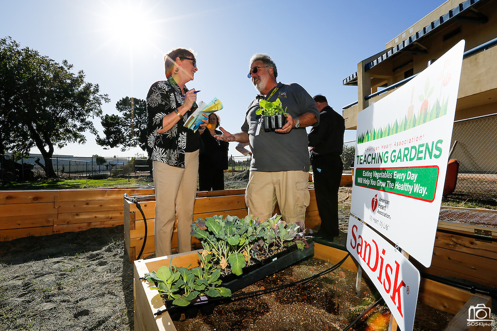 Milpitas High School biology and forensic science teacher Gordon Sanford (right) talks about the goals of the new American Heart Association Teaching Garden with Katherine Conred of the American Heart Association, members of the Milpitas Unified School District, and SanDisk at Milpitas High School in Milpitas, California, on October 8, 2013. (Stan Olszewski/SOSKIphoto)