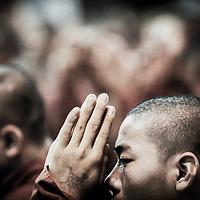 Bago (Pago), Myanmar (Burma) May 2006<br /> Buddhist monks pray in a monastery of Bago.<br /> Photo: Ezequiel Scagnetti