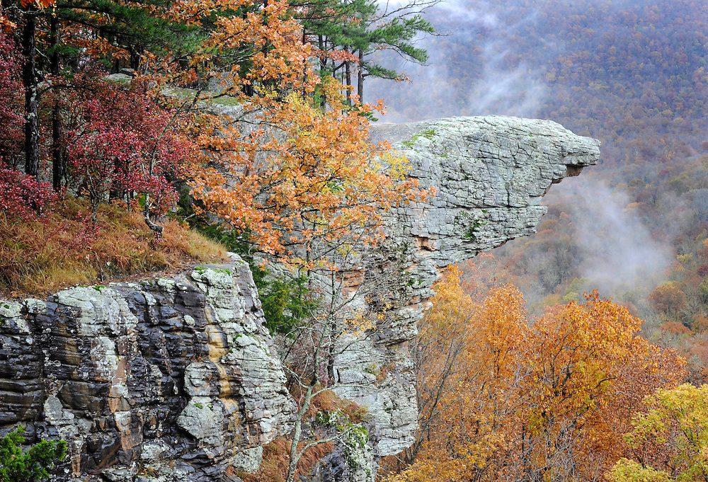 Whitaker Point, more commonly known as Hawksbill Crag, is a favorite hiking and photography destination in the Upper Buffalo River Wilderness area in northern Arkansas.