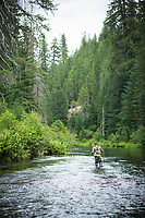Fly fishing Upper Rogue River, Oregon.