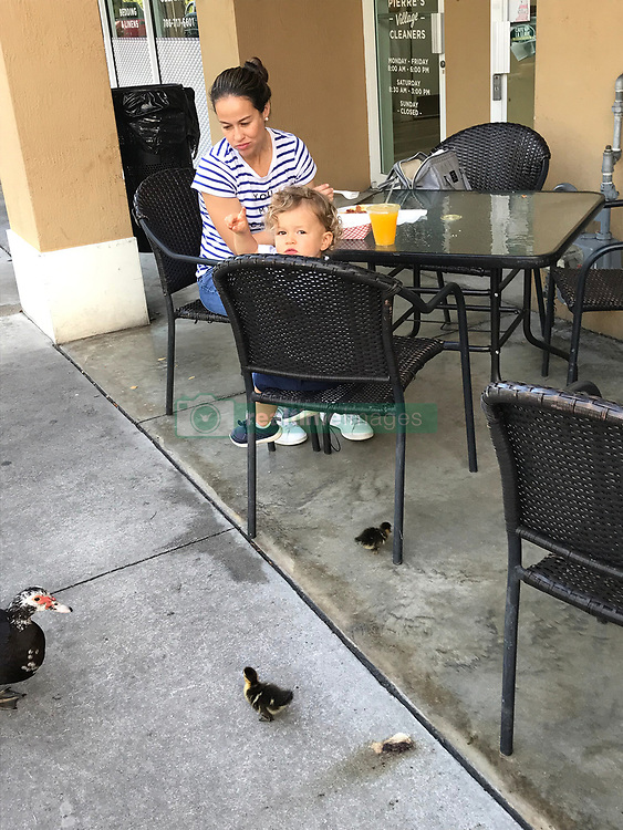 May 5, 2019 - Miami, FL, USA - Melanie Galarce and her son Nathaniel don't want the ducks to disappear in Miami Springs. Galarce says her son loves seeing them when they go out for breakfast or walk around in the mornings. (Credit Image: © TNS via ZUMA Wire)