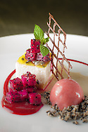 Chocolate Tuile, Raspberry Sauce, Dragon fruit Compotes, Ginger Flower Sorbet