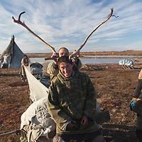 Sept 2009 Yamal Peninsula, Siberia, Russia - global warming impacts story on the Nenet people , reindeer herders in the Yamal Peninsula