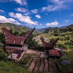 Indonesia - Sulawesi - Tana Toraja