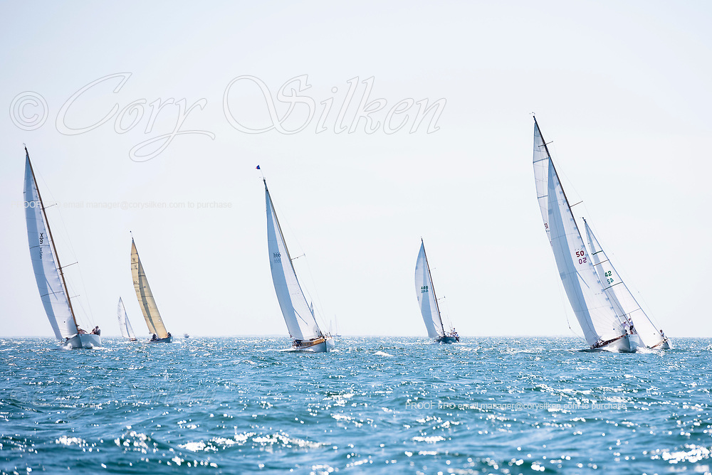 Sonny and Santana sailing in the Opera House Cup.