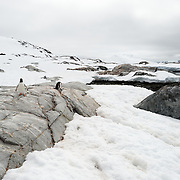 A wide-angle shot of some of the scenic landscape on Petermann Island on the western side of the Antarctic Peninsula.