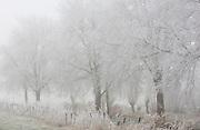 Winter landscapes, December.