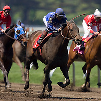 """(PPAGE1) Monmouth Park 5/13/2006 """"BATTLEVIEW"""" (center) wins the 5th race of the day driven by Jockey Mario Madrid.   Michael J. Treola Staff Photographer.....MJT"""